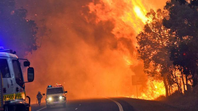 Kebakaran hutan Australia pada 2016. (AFP)