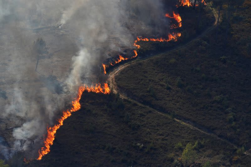 Portugal counts on drones to bolster defences against wildfires during pandemic