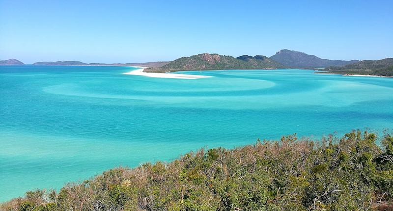 The 46-year-old Tasmanian tourist was bitten while swimming in the water near Cid Harbour in the Whitsunday Islands.