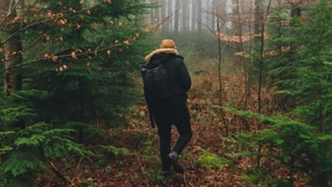 Ilustrasi walking trip (Dok.Unsplash/Luke Porter)