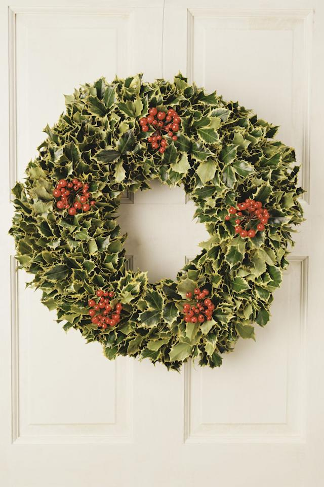 """<p>Growing up to 50 feet tall (!), <a href=""""http://homeguides.sfgate.com/instructions-planting-caring-holly-bush-66844.html"""" target=""""_blank"""">holly trees</a> don't exactly belong inside. However, little shrubs or wreaths can pep up your home. Either way, only female varieties will produce the bright red berries. </p><p><strong><a class=""""body-btn-link"""" href=""""https://www.amazon.com/Nellie-R-Stevens-Holly-Tree/dp/B0725WJJFC/?tag=syn-yahoo-20&ascsubtag=%5Bartid%7C10057.g.3993%5Bsrc%7Cyahoo-us"""" target=""""_blank"""">SHOP NOW</a> </strong><strong><em>amazon<strong><em>.com</em></strong></em></strong><br></p>"""