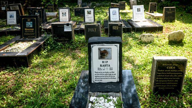 Kuburan hewan di Rumah Sakit Hewan Jakarta (RSHJ) di Ragunan, Jakarta (22/9/2020). Didirikan pada 1993, RSHJ merupakan salah satu rumah sakit hewan tertua di Indonesia. (Xinhua/Agung Kuncahya B.)