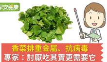 香菜排重金屬、抗病毒,專家:討厭吃其實更需要它