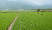 56年來臺灣最大旱災 嘉南地區一期停灌成定局 補償措施出爐