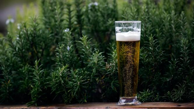 7 Dampak Negatif Minuman Keras Menurut Islam