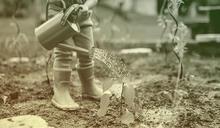 培養孩子環保意識
