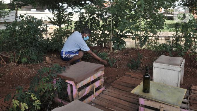 Pungki (53) merawat tanaman perkebunan di kolong Tol Becakayu, Kalimalang, Jakarta, Kamis (4/6/2020). Jenis tanaman yang ditanam di kebun ini mulai dari bunga, sayuran, hingga buah yang hasil panennya dapat dinikmati siapa saja. (merdeka.com/Iqbal S. Nugroho)