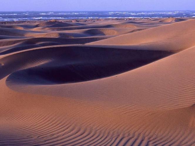 頂頭額沙洲:台版撒哈拉沙漠