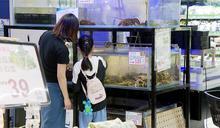 家樂福把水族箱搬進賣場 瞄準活體海鮮市場