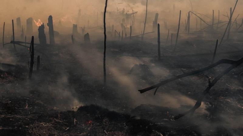 A peat land fire is seen at Rumbai Pesisir village Pekanbaru, Riau, Indonesia
