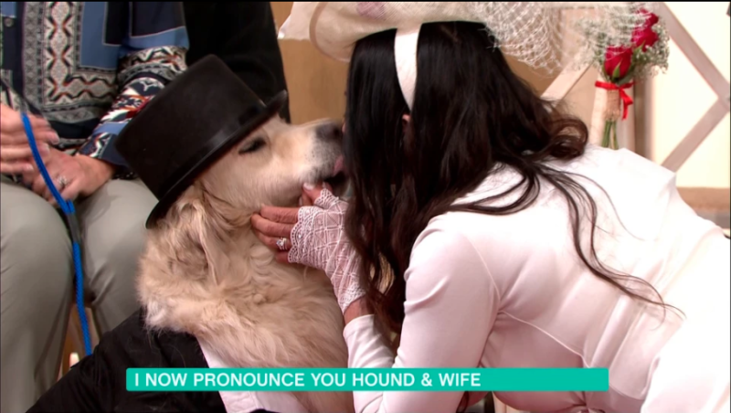 Elizabeth Hoad wed her dog Logan in a bizarre live broadcast ceremony. Photo: Itv