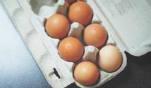雞蛋保存有正確擺法!農夫揭原理