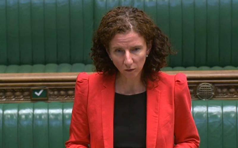 Anneliese Dodds in the Commons yesterday - PA