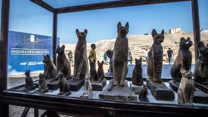 Mumi hewan seperti anak singa, kucing, burung, hingga beberapa buaya ditemukan di Mesir. (AFP/Khaled Desouki)