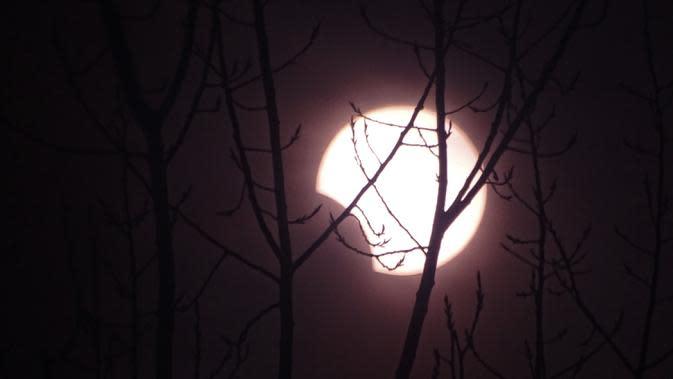 Bulan bergerak menutupi matahari saat fase gerhana matahari cincin di Fuyang, Provinsi Anhui, China, Kamis (26/12/2019). Gerhana matahari yang terjadi pada hari ini dapat diamati dari sejumlah wilayah mulai Afrika timur, seluruh Asia, Samudera India, dan Australia utara. (STR/AFP)