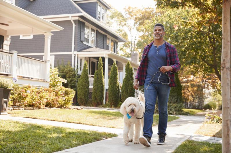 man walking dog on city sidewalk, relationship white lies
