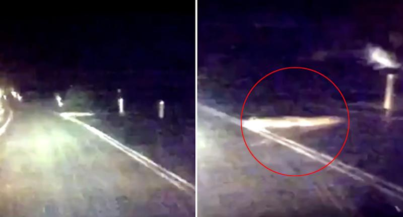 Crocodile sighting: Queensland Police officers spotted the croc in the middle of a road in Tully, north Queensland.