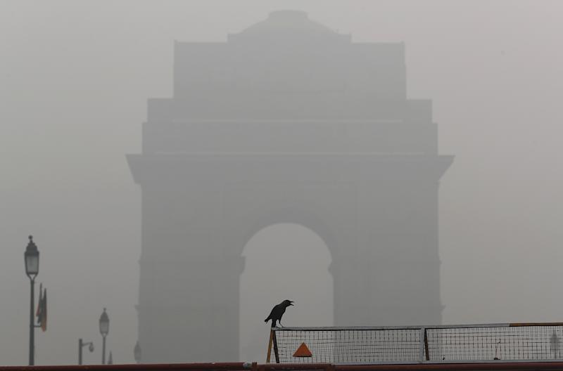 A crow sits on a barricade in front of India Gate amidst smog in New Delhi, Nov. 3, 2019. (Photo: Adnan Abidi/Reuters)