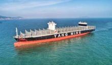 歐洲線、東南亞線運價周漲1成 陽明、萬海Q4獲利有望上修