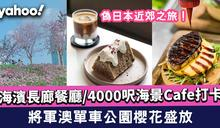 【將軍澳好去處】將軍澳單車公園櫻花盛放/海濱長廊餐廳/4000呎海景Cafe打卡