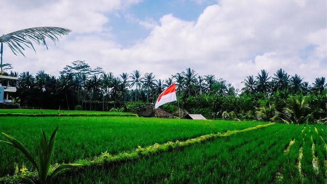 Ilustrasi Bendera Indonesia. (Bola.com/Pixabay)
