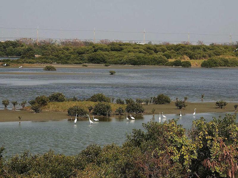 湖濱水鳥公園