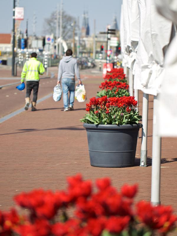 Sejumlah pot bunga tulip terlihat di depan Hotel Double Tree Hilton di Amsterdam, Belanda (8/4/2020). Festival Tulip Amsterdam 2020 menampilkan tulip di jalan-jalan sepanjang bulan April. Akibat epidemi COVID-19, beberapa lokasi pameran tulip ditutup tahun ini. (Xinhua/Sylvia Lederer)