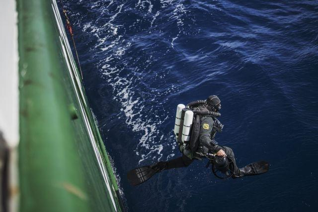 'Ghost' fishing gear: the trash haunting ocean wildlife