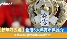 【新年好去處】全港5大年宵市集推介 海景年宵/寵物市集/年貨大街