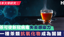 【新型肺炎】日大學研究:茶可使新冠病毒失去感染力 一種茶類抗氧化物成為關鍵!