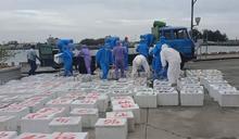 台南查獲漁船走私近2噸大閘蟹 市價逾500萬