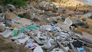香港海洋公園保育基金:塑膠海洋