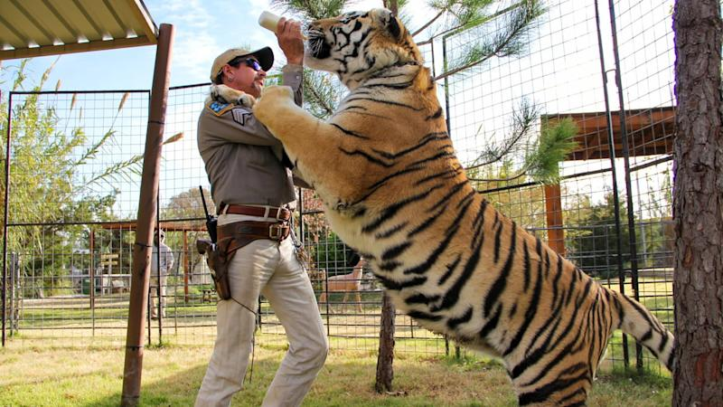 Best shows on Netflix Tiger King