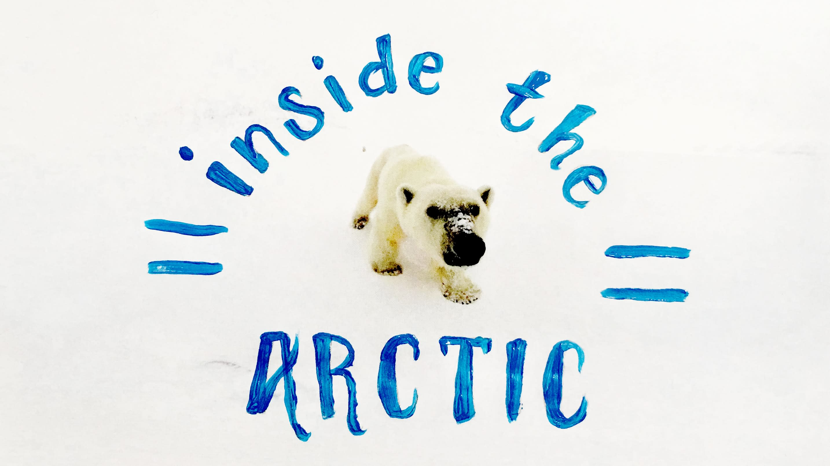 極地之境:拯救北極圈