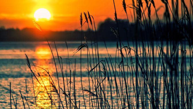 Danau (sumber: Pixabay)
