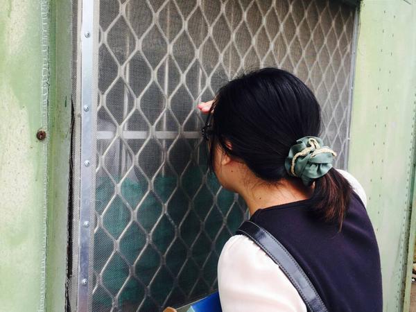 台灣最需要被加薪的行業 社工的無敵鐵金肝哀歌
