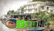 六月白紋伊蚊誘蚊器指數升至14.8% 馬灣蚊患廣泛