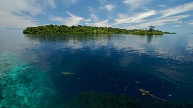 Perubahan Iklim Bukan Omong Kosong, Ini Bukti 5 Pulau Tenggelam (BBC/Guardian)