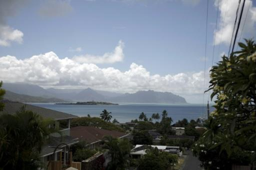 Jury studied reefs in Hawaii's Kane'ohe Bay devastated by urbanisation, dredging, coastal development and the discharge of sewage