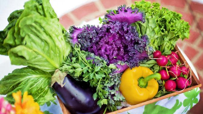 Ilustrasi sayuran (dok. Pixabay.com/jill111/Putu Elmira)