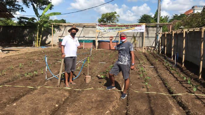 Kebun Pekarangan Pangan Lestari berusaha mencukupi kebutuhan pangan sendiri di masa COVID-19 di Bali.
