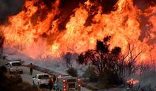 加州野火肆虐釀西岸「紫爆」1個月! 專家擔憂1200人恐有「隱性致死」