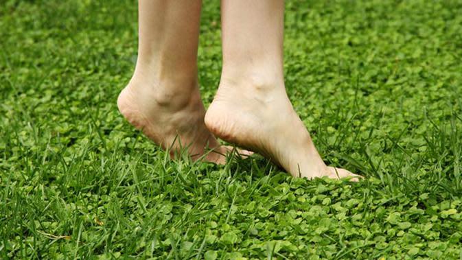 Cuka ternyata bisa digunkan untuk mengatasi tumit pecah-pecah pada kaki.