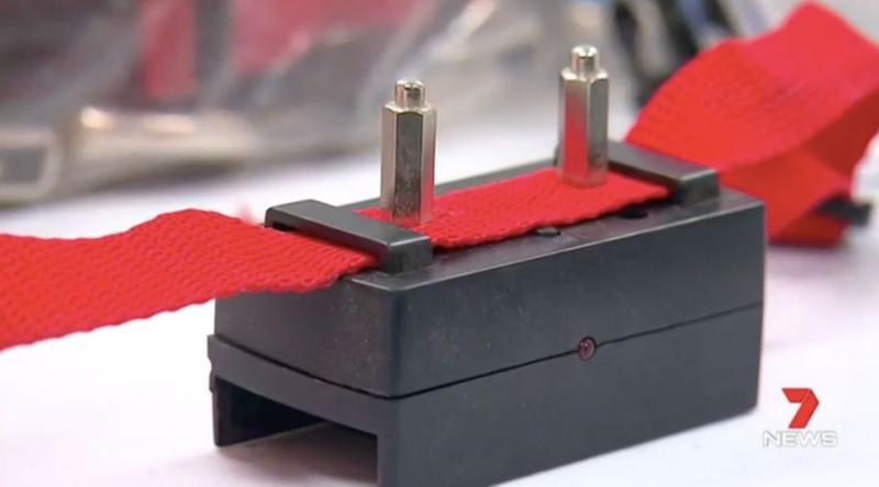 Electric shock collars were found in Benn Hamilton's home. Source: 7 News