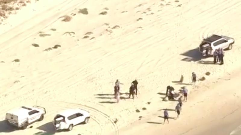WA gyrocopter crash: Two men dead after joy flight south west WA