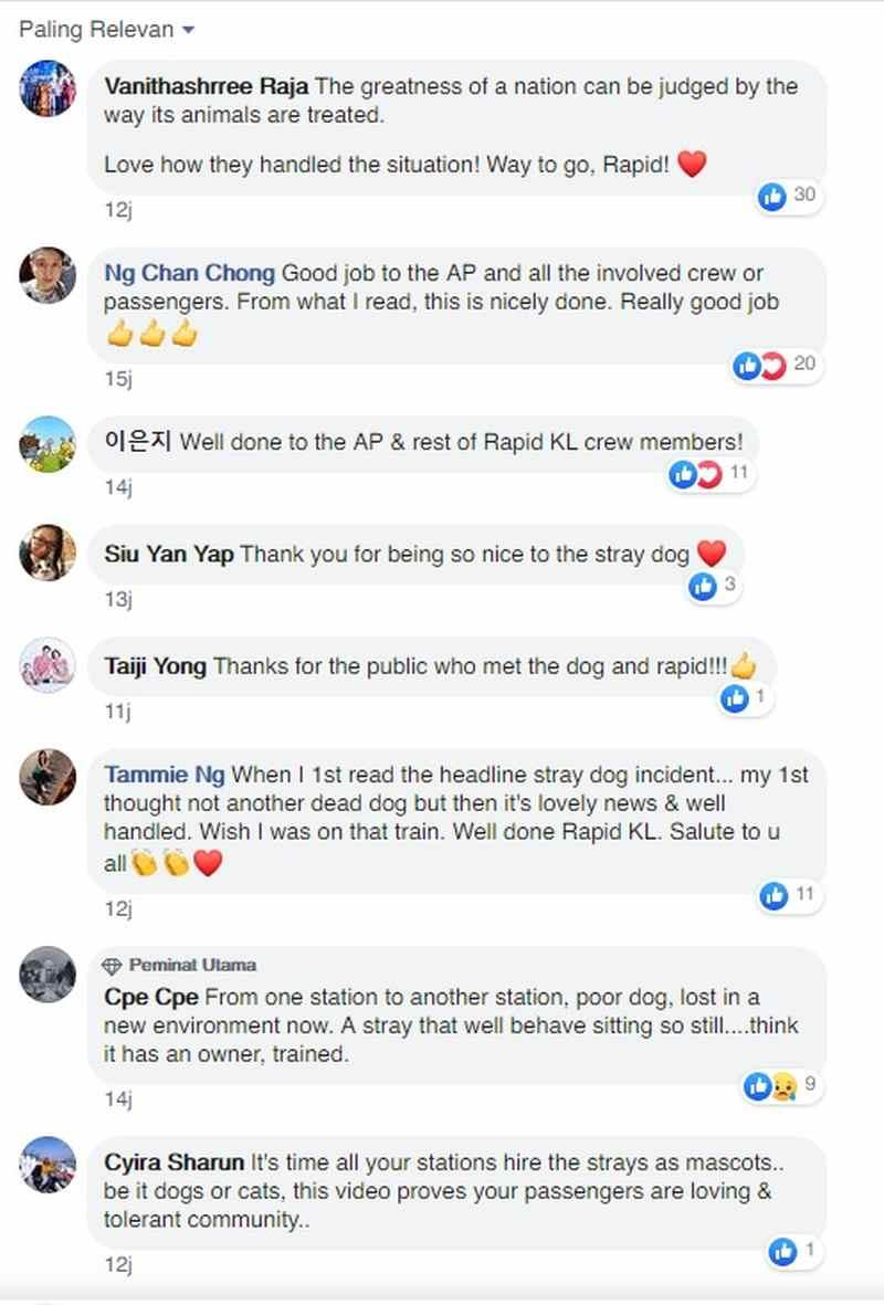 Facebook users commended Rapid Rail for not harming the canine. ― Screengrab via Facebook/RapidKL