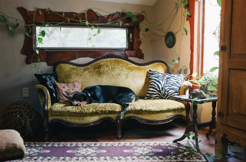 Photo credit: Sean/Airbnb