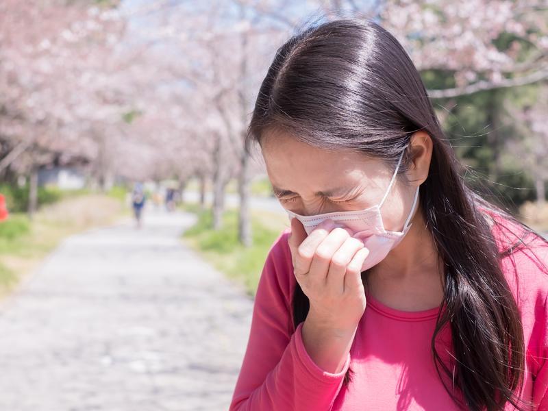 過敏性鼻炎常見症狀 流鼻水、眼鼻癢