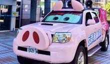 國民黨粉紅豬皮卡剛亮相就遭公路總局盯上 只要上路就開罰