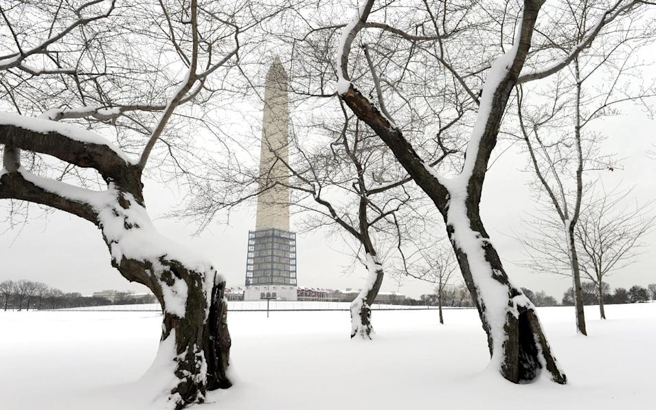 Cherry trees are blanketed with snow near the Washington Monument in Washington, Monday, March 17, 2014. Snow has been falling in parts of the Mid-Atlantic and Northeast as winter-weary motorists faced another potentially treacherous commute Monday morning, just days before the start of spring. (AP Photo/Susan Walsh)